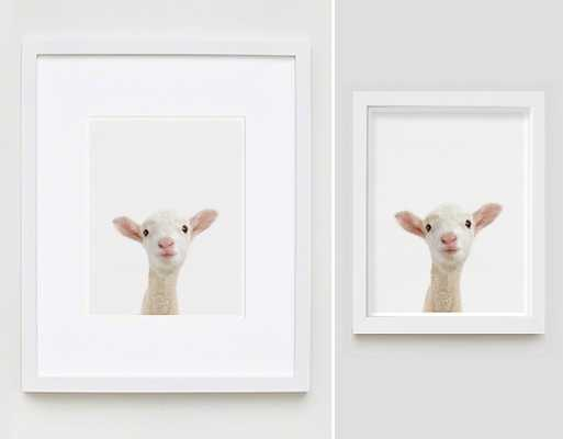 "Lamb Little Darling-11"" x 17"" -Framed - shop.com"
