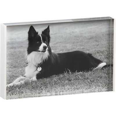 Acrylic white rim 4x6 picture frame - CB2