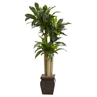 Nearly Natural 4.5' Cornstalk Dracaena Silk Plant - Target