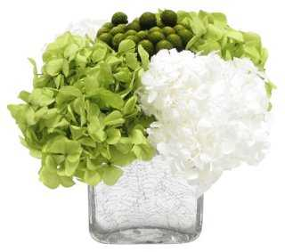 Hydrangea Basil Arrangment, Preserved - One Kings Lane