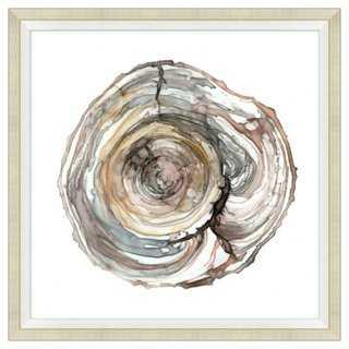 "Watercolor Ring II - 34"" x 34"" - Framed - One Kings Lane"