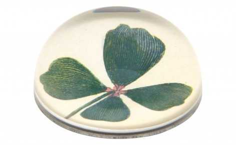 CLOVER DOME PAPERWEIGHT - Jayson Home