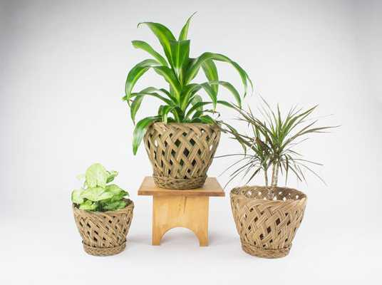 Bohemian Decor - Woven Planters - Etsy