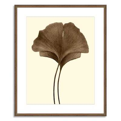 Offset for west elm Print - Ginkgo Leaves I by Jeff Friesen - large - mat - Society6