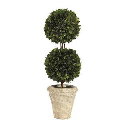 Preserved Boxwood Topiary Double Ball - Ballard Designs
