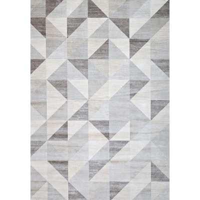 "Sonoma Colburn Gray & White Area Rug - 5'3"" x 7'6"" - AllModern"