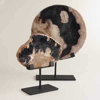 Petrified Wood on Stand - Small - World Market/Cost Plus