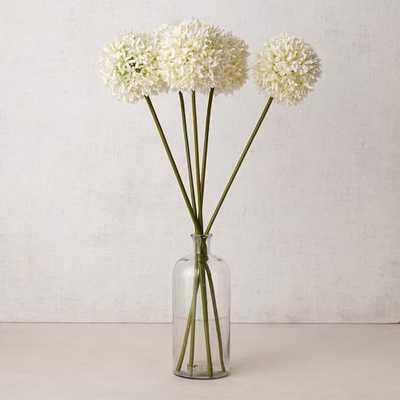 Faux Flower Head Stems - White - West Elm