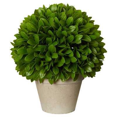 """Kinsley Ball Plant - 10"""" H - Wayfair"""