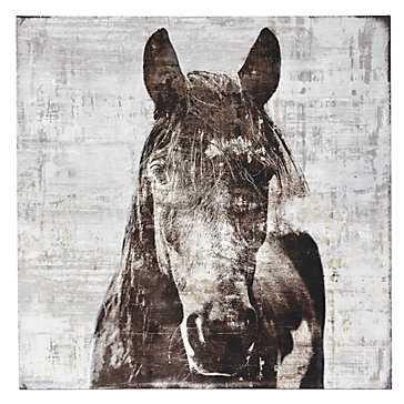 Winter Stallion  - 47''W x 47''H  - Unframed - Z Gallerie