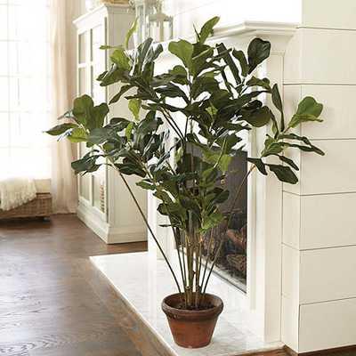 Fiddle Leaf Tree - Ballard Designs