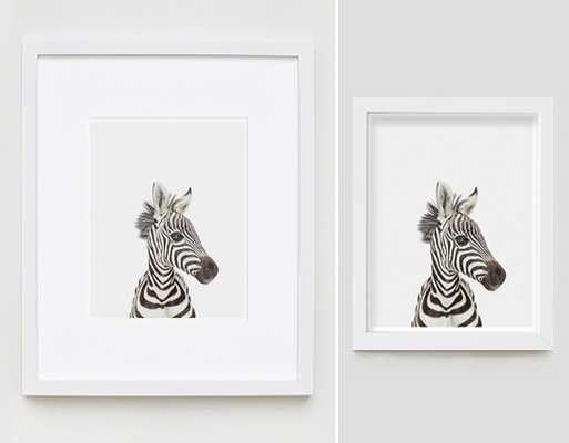"""Baby Zebra Little Darling-8.5"""" x 11""""-Framed - shop.com"""