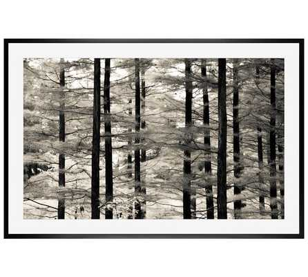 Into the Woods Print -  28 x 42 - Mat - Wood Gallery Frame - Pottery Barn