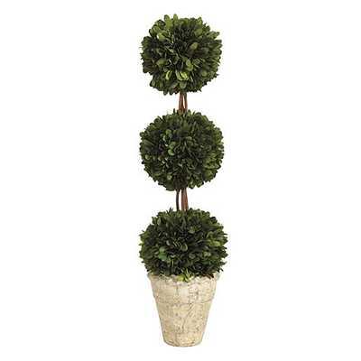 Preserved Boxwood Topiary Triple Ball - Ballard Designs