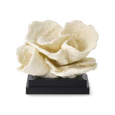 Coral On Black Stand, Blade - Williams Sonoma Home