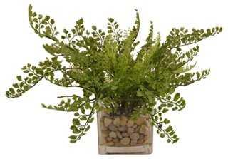 "16"" Maidenhair Fern in Vase, Faux - One Kings Lane"