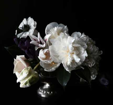 """New Large Scale Dark Floral Modern Flower Photography- 20""""x 30""""- Unframed - Etsy"""