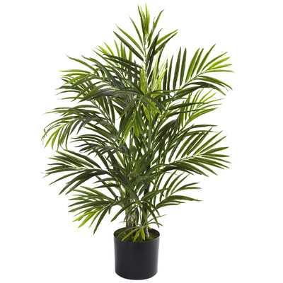 "Areca Palm Tree Floor Plant in Pot- 42"" - Wayfair"