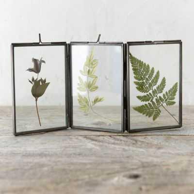 Folding Botanical Frame 3-FOLD - shopterrain.com