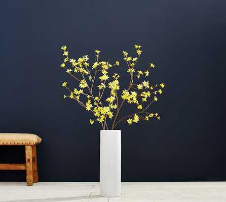 YELLOW FORSYTHIA BRANCH - Pottery Barn