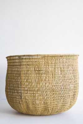 rain forest baskets - lostandfoundshop.com