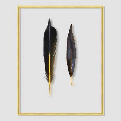 Still Acrylic Wall Art - Feathers -  Flicker Feather And Willow Leaf - West Elm