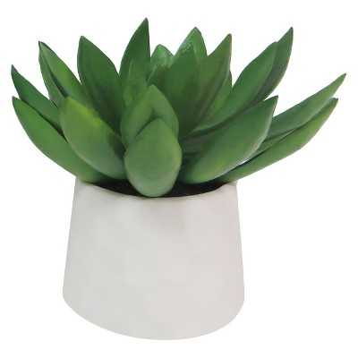 "Thresholdâ""¢ Succulent in Pot - Green (5.5""H) - Target"
