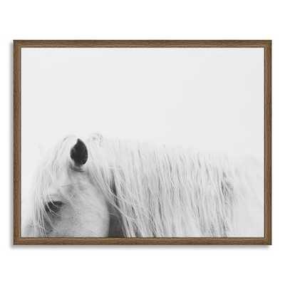 "Framed Print - Horse I - 40""w x 27""l - West Elm"
