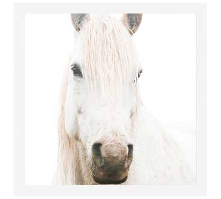 "WHITE ON WHITE HORSE FRAMED PRINT BY JENNIFER MEYERS - 48"" x 48"" - FRAMED - Pottery Barn"
