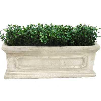 Faux Boxwood Rectangular Hedge by Creative Branch - Wayfair