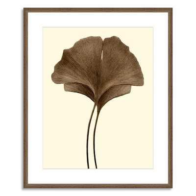 Offset for west elm Print - Ginkgo Leaves I - Large, Mat (Framed) - West Elm