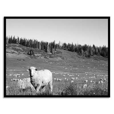 Minted for west elm - Mountain Herd-Framed print. - West Elm