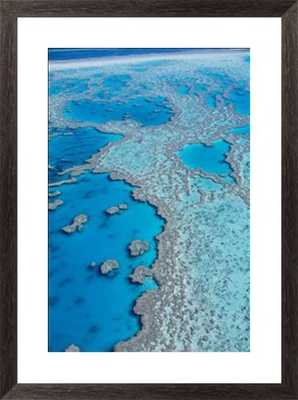"""Great Barrier Reef/22"""" x 28""""  Framed - Photos.com by Getty Images"""