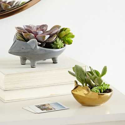 Ceramic Animal Planters - Mouse & Hedgehog (One of each) - West Elm