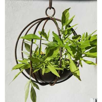 Handmade Globe Copper and Steel Hanging Planter - Wayfair