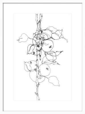 Apple Tree 1, 23x31 - Artfully Walls