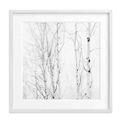 white aspens - Minted