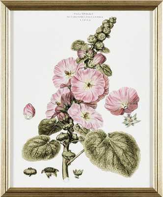 Ballard Designs Petite Blushing Floral Art // Print IV - Ballard Designs