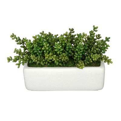 Artificial Sedum Plant in Planter - Wayfair