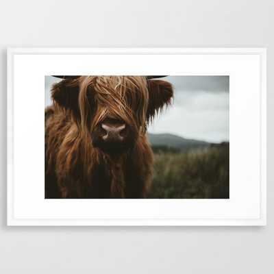 Scottish Highland Cattle Framed Art Print - Society6