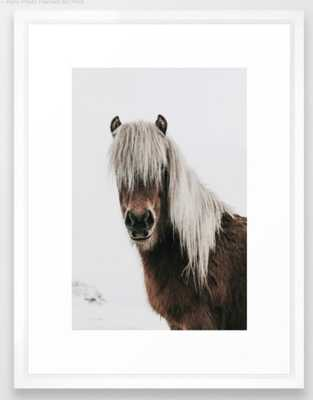 Icelandic Horse - Pony Photo Framed Art Print - Society6