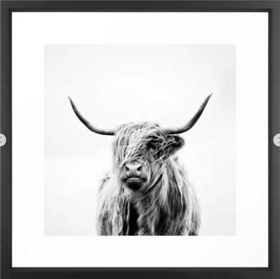 portrait of a highland cow Framed Art Print - Society6