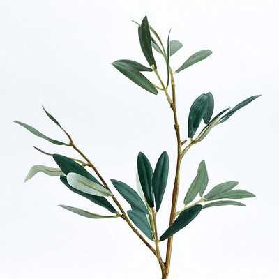Olive Leaf Stems - Set of 3 - Ballard Designs