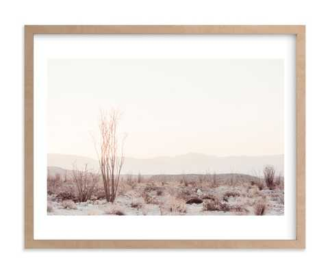 Ocotillo II with white border - Minted