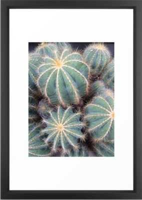 "Cacti Framed, Vector Black Frame, 15""x21"" - Society6"