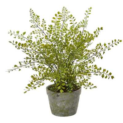 Maiden Hair Artificial Plant in Decorative Planter - Fiddle + Bloom