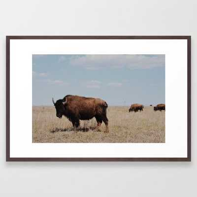 Big Horn Bison Framed Art Print - Society6