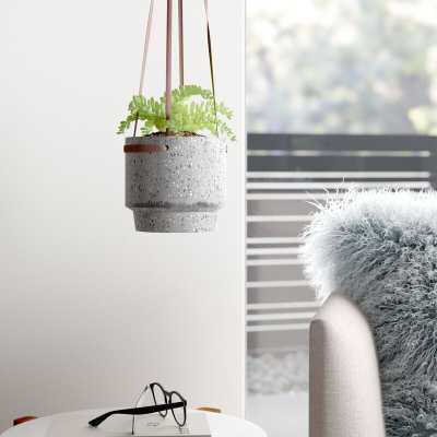 Kleinschmidt Cement Hanging Planter - AllModern