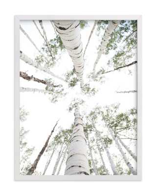 aspens at altitude,Wonderfully White - Minted