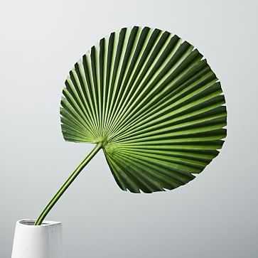 Faux Botanicals, Fan Palm - West Elm
